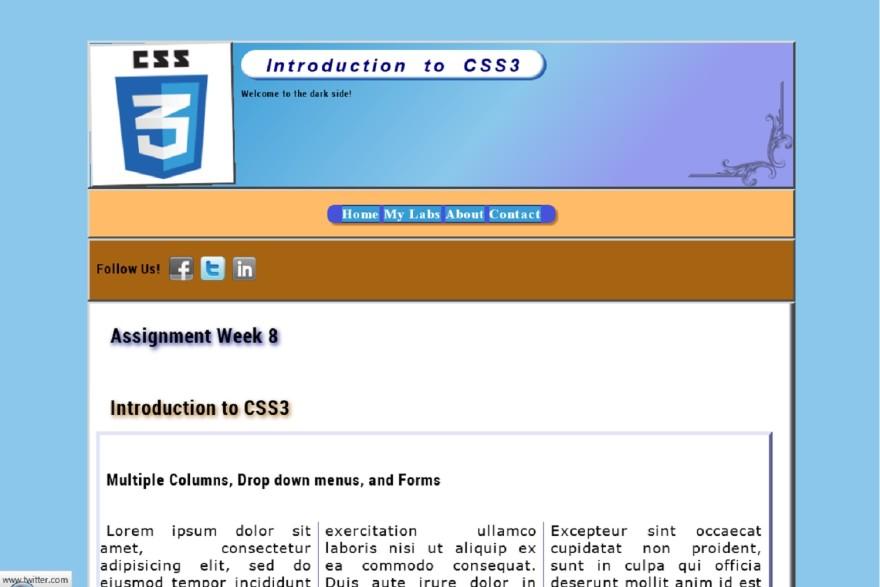 css3 demo